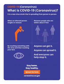 what is COVID-19 infographic.